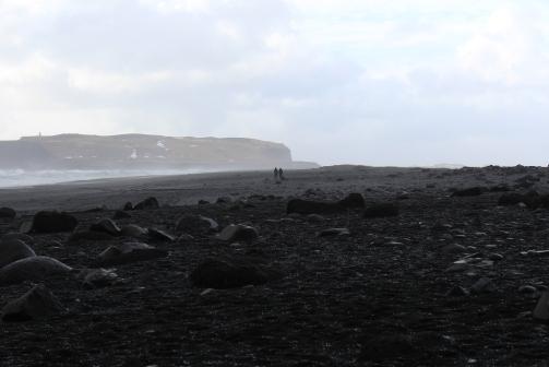 Black Beach March (20).JPG